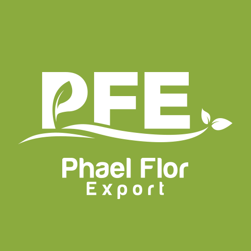 Phael Flor Export export Organic Spices: Cinnamon, Turmeric, Ginger, Clove, Pinkpepper, Vanilla... and plant extract: Pepper, Geranium, Clove, Ravintsara...